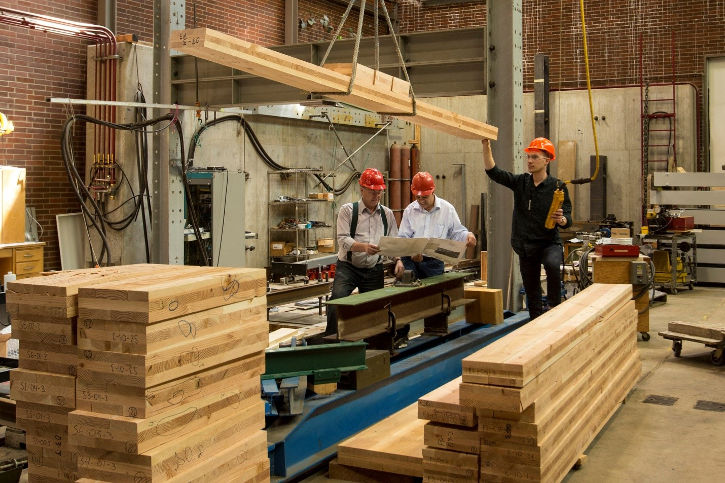 The challenges facing the timber industry