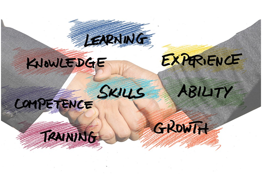 5 Business Skills That Every Entrepreneur Needs
